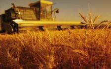 Ανοδικά οι εξαγωγές προς Ρωσία με αιχμή τα αγροτικά προϊόντα